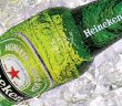 Dutch Brands